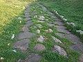 Strada romana cisterna.jpg