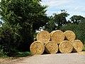 Straw bales near Tavistock Farm - geograph.org.uk - 527354.jpg