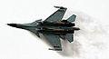 Su-30MKM (3861859122).jpg