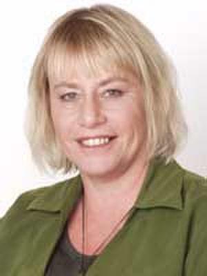 Sue Bradford - Bradford in the early 2000s