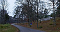 Sundbyholms naturvårdsområde0002.jpg
