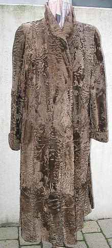 Sur karakul broadtail coat 1.JPG
