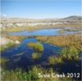 Susie Creek 2012 BLM.png