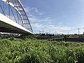 Suwa-Koenbashi Bridge and bridge of Miike Railway on Suwagawa River.jpg