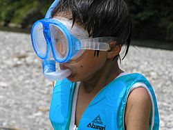Swimming goggles and snorkel tube水中眼鏡とシュノーケル.jpg