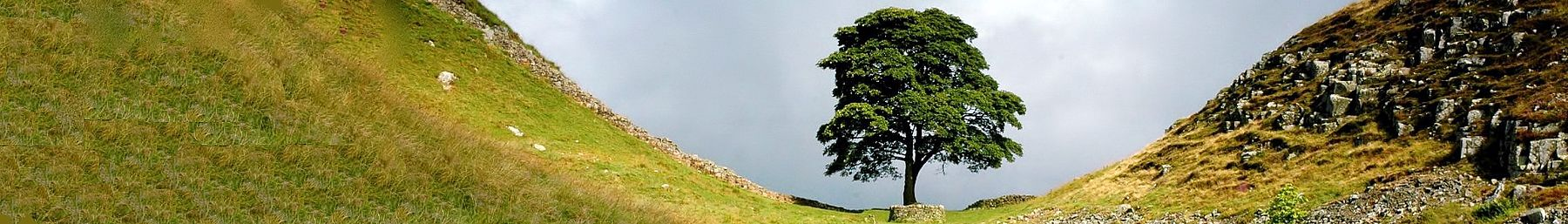 Sycamore Gap on the route of Hadrian's Wall which historically divided England and Scotland.