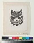 Tête de chat (NYPL b14506646-1149426).jpg