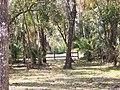 TSP Landscape01.jpg