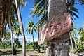 Tabu in Bora Bora.jpg
