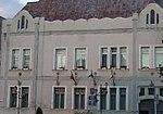 Hôtel de ville de Tasnad.JPG