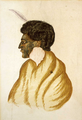Te Raparaha, chief of the Kawias, watercolour by R. Hall, c. 1840s cropped (cropped).png