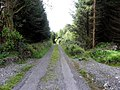 Teeboy townland, Corlough parish, County Cavan, Republic of Ireland. Heading east.jpg