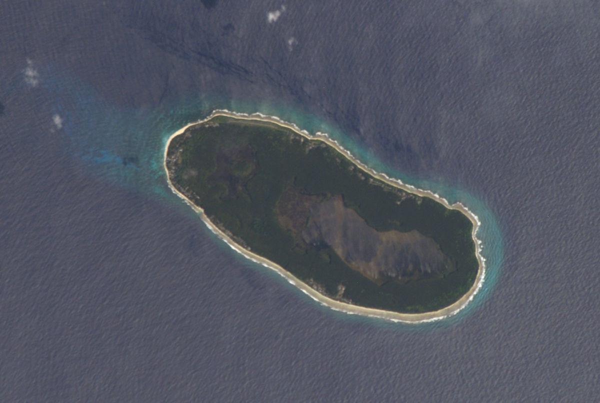 дневник крипторха рифа получены новые координаты