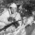 The Campaign in North West Europe 1944-45 B13666.jpg