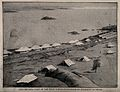 The Cholera Camp at Gemai, Sudan; panoramic view by the Nile Wellcome V0015358.jpg