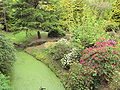 The Fairy Glen viewed from iron bridge, Sefton Park, Liverpool - DSC05666.JPG