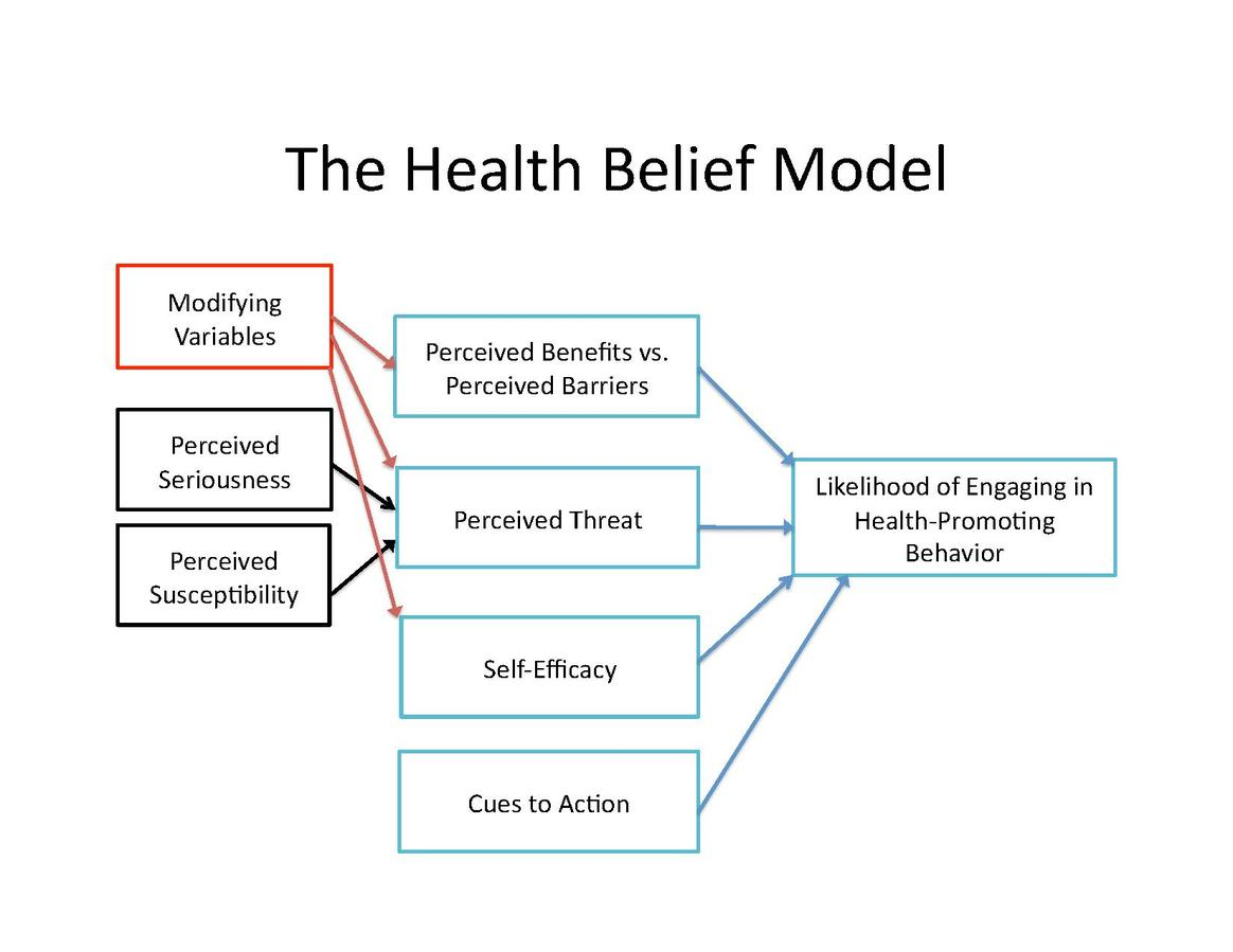 compare and contrast social cognitive theory and health belief model The practice of health promotion is based on a number of theories and models (for example, the health belief model, the theory of reasoned action, the trans-theoretical (stages of change) model, social learning theory, social cognitive theory, the theory of planned behaviour, community development and models of organisational change) with the.