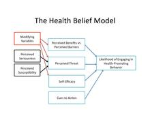 The Health Belief Model And Drinking And Driving Strecher