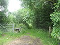 The entrance to Beacon Lane, here part of the Cotswold Way - geograph.org.uk - 1374046.jpg