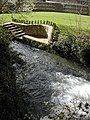 The mill race on the River Cerne, Cerne Abbas - geograph.org.uk - 352591.jpg