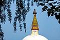 The stupa in the international goutami temple.jpg