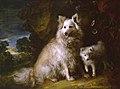 Thomas Gainsborough (1727-1788) - Pomeranian Bitch and Puppy - N05844 - National Gallery.jpg