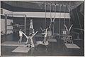 Thomond College of Physical Education students - Gymnastics (9521501965).jpg