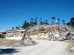 Thrumshing La - View of the road at Thrumshing La