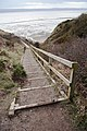 Tinker's Dell Steps - geograph.org.uk - 1730124.jpg