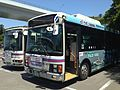 Tokushima Bus at Naruto Park Bus Station.jpg