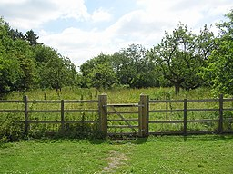 Top Lodge - The Fineshade Community Orchard - panoramio