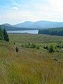 Towards Loch Riecawr - geograph.org.uk - 534003.jpg