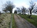 Track to Powhead Plantation - geograph.org.uk - 804513.jpg
