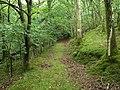Trackway, Glanmerin - geograph.org.uk - 34397.jpg