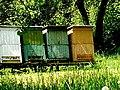 Tradičná ľudová činnosť, včelárstvo 20 Slovakia 2.jpg