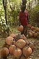 Traditional pottery in Nigeria(ikpu ite)30.jpg