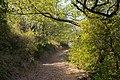 Trail in Murviel-lès-Béziers 01.jpg