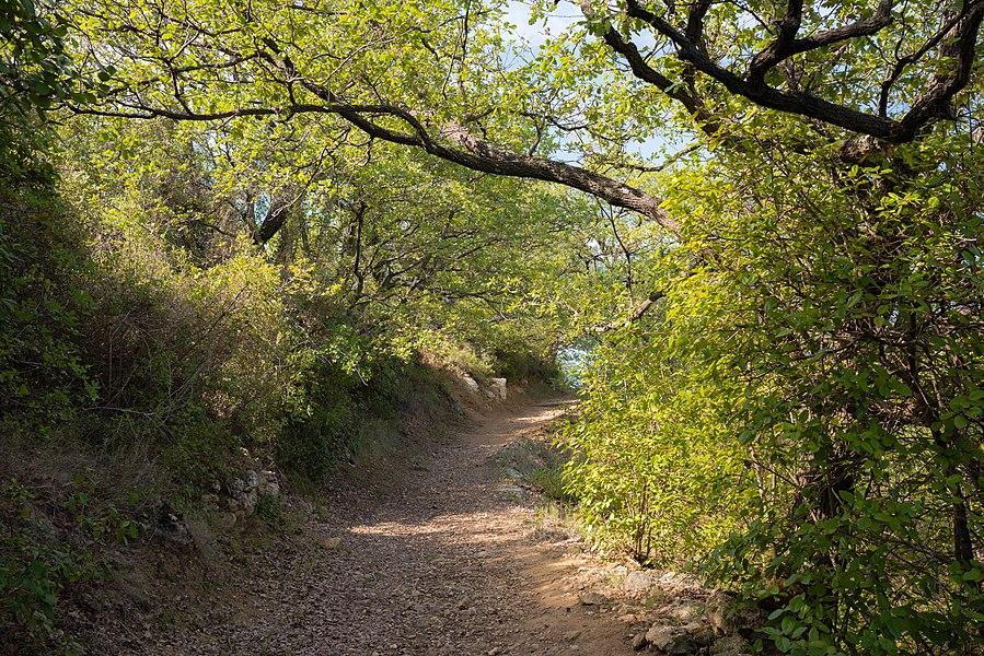 A trail in the commune of Murviel-lès-Béziers, Hérault, France.