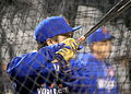Travis d'Arnaud- -WorldSeries Game 5 (22166226674).jpg