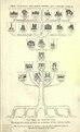 TreeofArchitecture.pdf