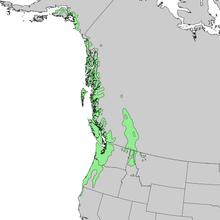 Mapa de alcance de Tsuga heterophylla 1.png