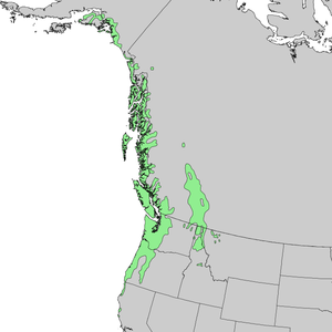 Tsuga heterophylla - Image: Tsuga heterophylla range map 1