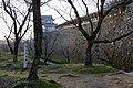 Tsuyama Castle11n4272.jpg