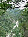 Ttrabzon rize road - panoramio.jpg