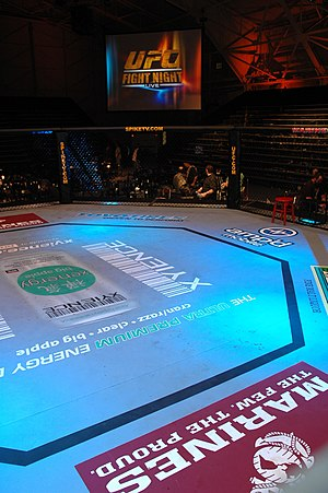 UFC 94 - All fights took place inside a cage, the UFC's Octagon.