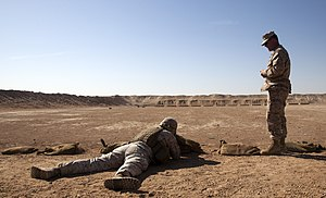Infantry weapons officer - Wikipedia