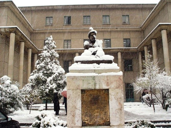 UT Literature snow