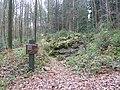 Vaals-Geologisch monument Sterrenstenen Vijlenerbosch (2).JPG
