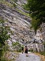 Valle de Ordiso - WLE Spain 2015 (10).jpg