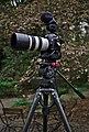 Videography Apparatus.jpg
